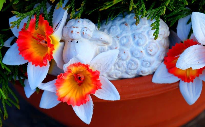 愉快的复活节羊羔 库存照片