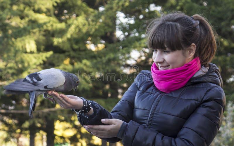 愉快的女孩哺养的鸽子 免版税库存照片