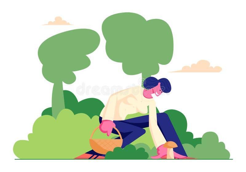 愉快的妇女字符拾起蘑菇并且投入了它对篮子在森林,Mushroomer度过时间户外秋天季节的女孩里 皇族释放例证