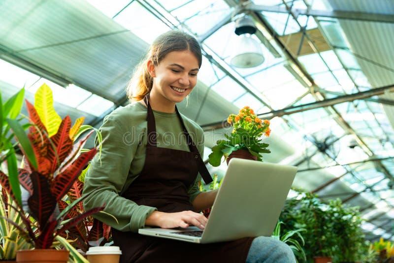 愉快的妇女花匠20s佩带的围裙藏品植物和使用膝上型计算机的图象 免版税库存照片
