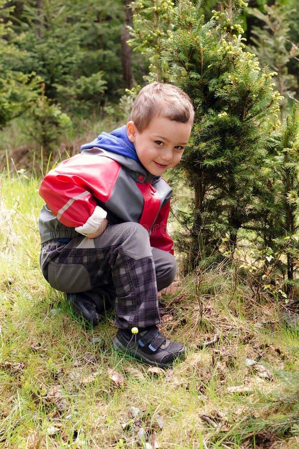 愉快的孩子在森林里 免版税图库摄影