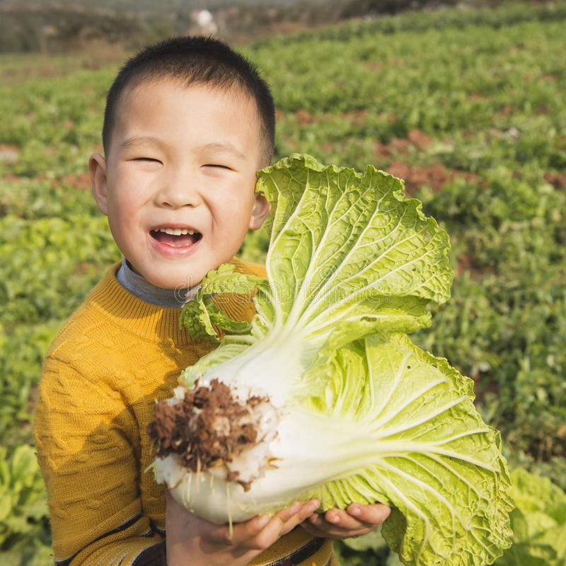 愉快的孩子用圆白菜 免版税库存照片