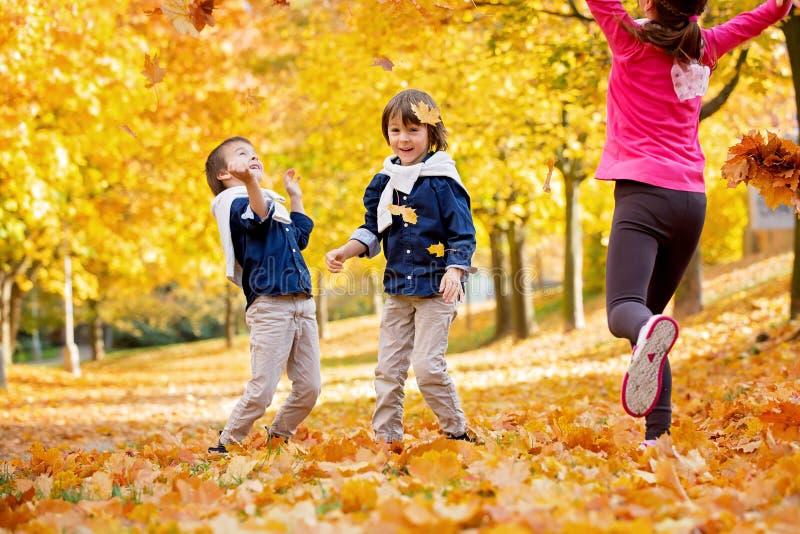 愉快的孩子,男孩兄弟,使用在有叶子的公园 库存照片