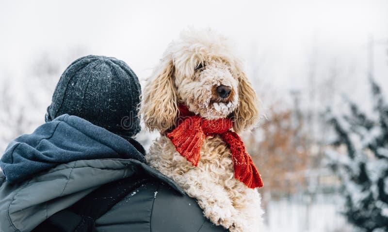 愉快的宠物和他的所有者获得乐趣在寒假季节的雪 寒假情感 免版税库存照片