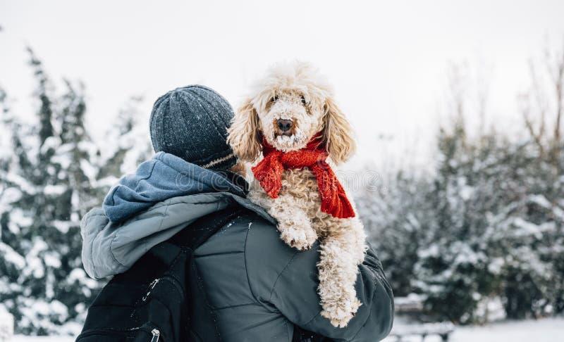 愉快的宠物和他的所有者获得乐趣在寒假季节的雪 库存照片