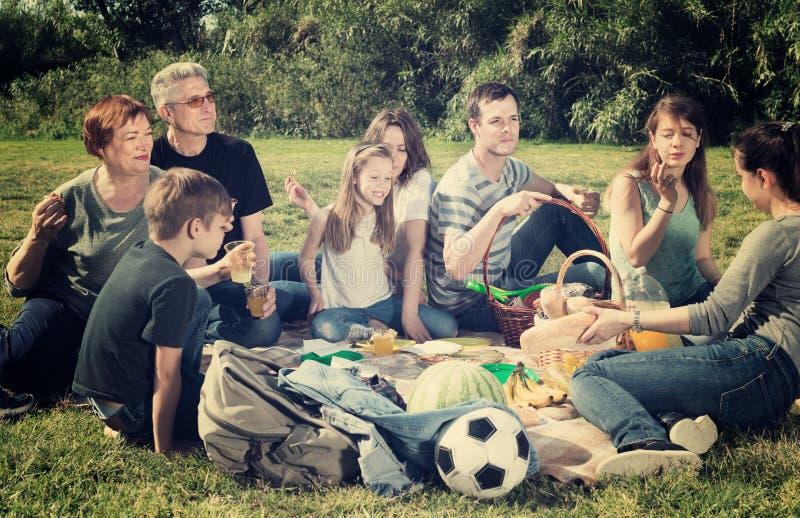 愉快的家庭和谈话坐野餐 免版税库存图片