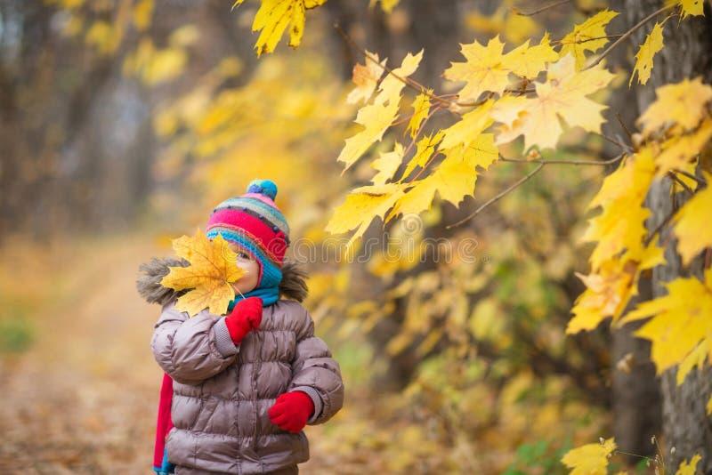 愉快的小孩,女婴在秋天的笑和演奏叶子在自然步行户外 库存图片