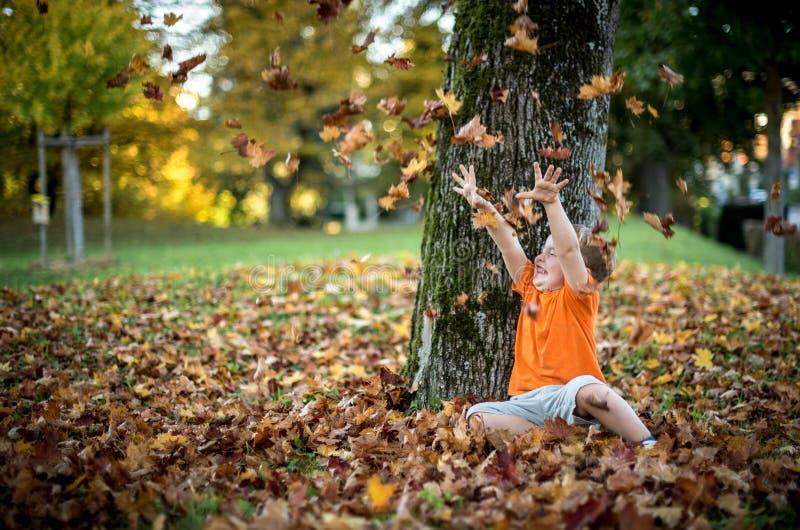 愉快的小男孩获得使用与下落的金黄叶子的乐趣 免版税库存照片