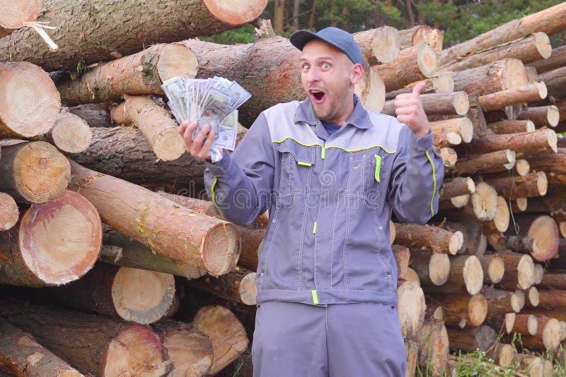 愉快的工作者日志记录器或木匠有大金钱在堆日志,被锯的木头附近 成功的事务的概念 免版税图库摄影