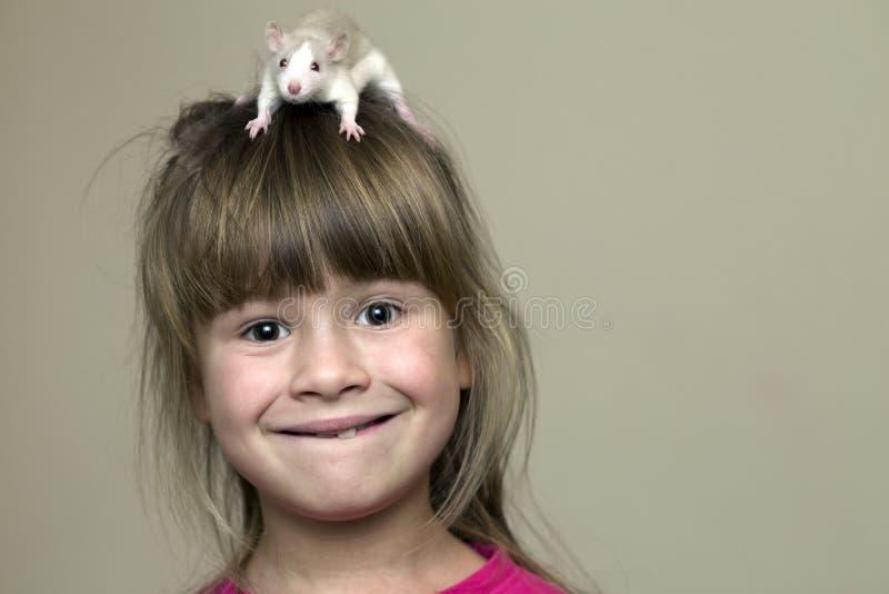 愉快的微笑的滑稽的逗人喜爱的儿童女孩画象有白色宠物老鼠仓鼠的在轻的墙壁拷贝空间背景的头 保持 免版税库存图片