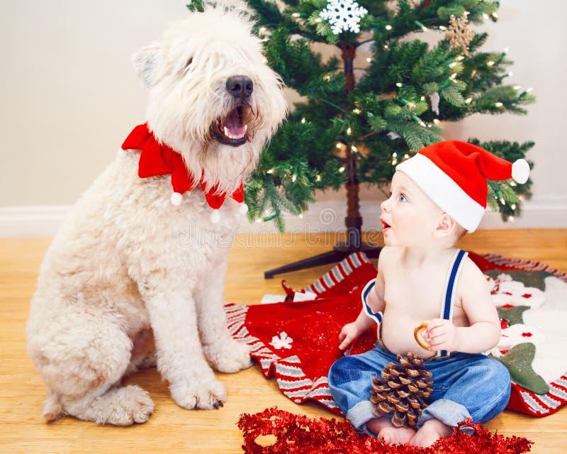 愉快的惊奇的滑稽的白白种人男婴坦率的生活方式画象新年圣诞节圣诞老人帽子的坐地板 库存图片