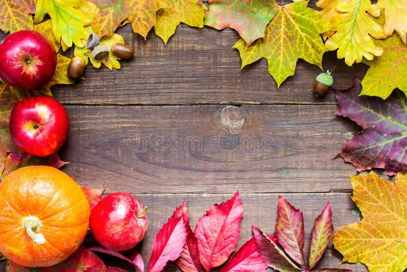 愉快的感恩秋天背景用南瓜、苹果和五颜六色的叶子 库存照片