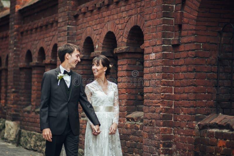 愉快的新娘和新郎在一个公园在他们的婚礼之日 免版税库存图片