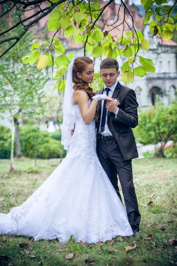愉快的新娘和新郎 库存照片