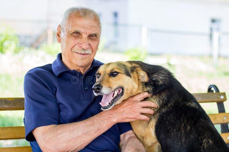 愉快的狗被按反对他的大师 狗展示他的对所有者的爱,当休息在公园时 免版税库存照片