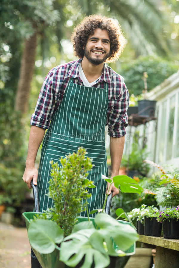 愉快的男性独轮车的花匠运载的植物 免版税图库摄影