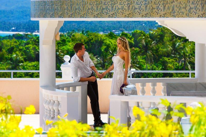 愉快的站立在bea中的石眺望台旁边的新娘和新郎 免版税库存图片