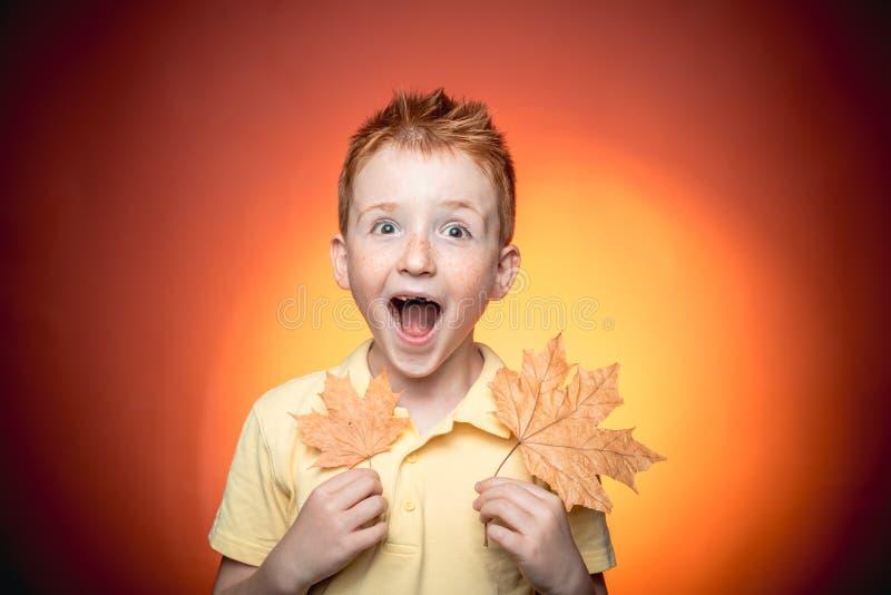 愉快的童年 秋天销售或黑色星期五 秋天礼服 复制文本的空间 叶子秋天衣物 秋天愉快的人民 免版税图库摄影