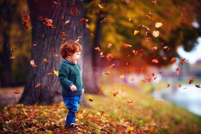 愉快的红头发人小孩男婴获得乐趣,使用与下落的叶子在秋天公园 免版税库存照片