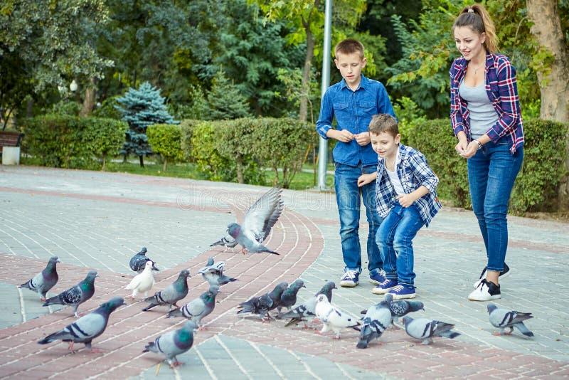 愉快的美丽的母亲和两个儿子喂养了鸽子 图库摄影