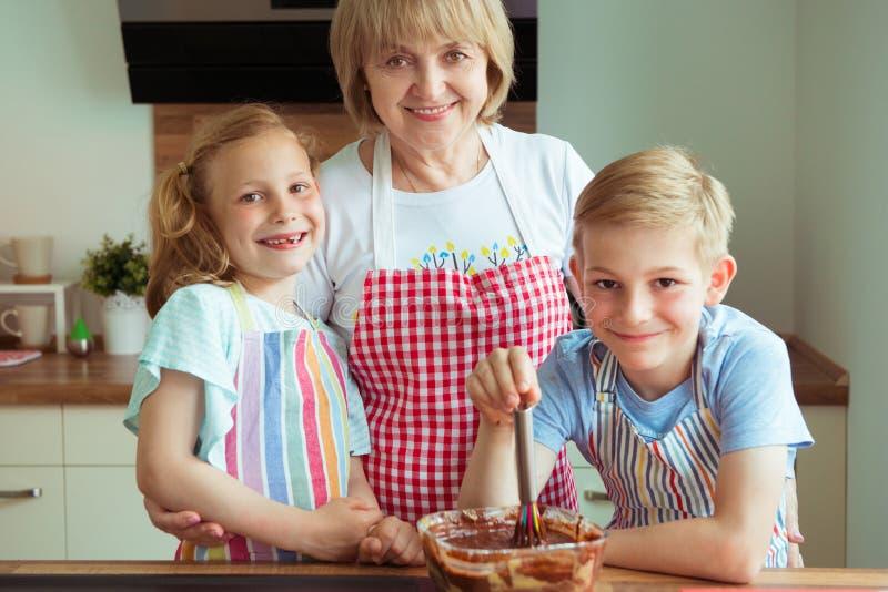 愉快的美丽的祖母和她的孙画象  图库摄影