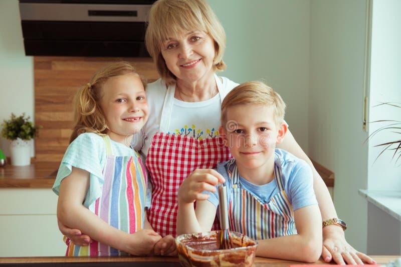 愉快的美丽的祖母和她的孙画象  库存照片