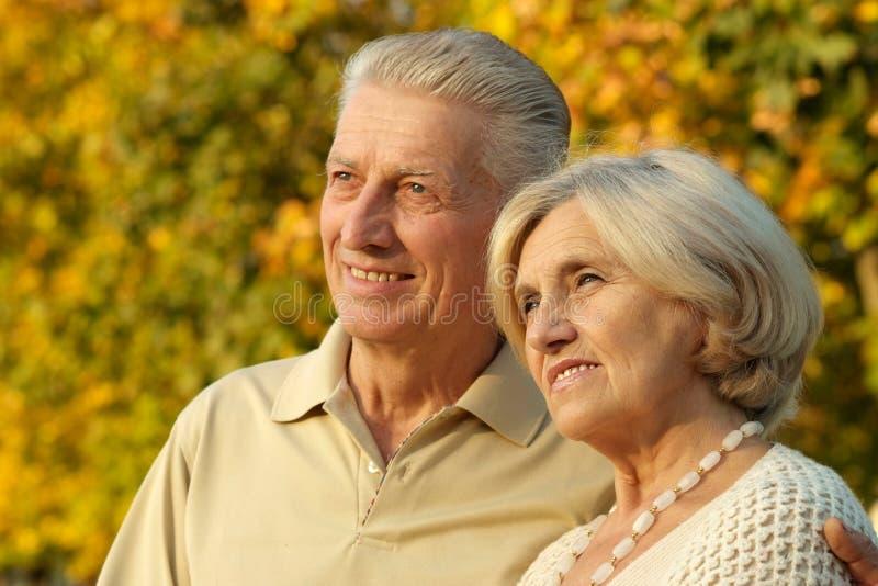 愉快的老夫妇 库存图片