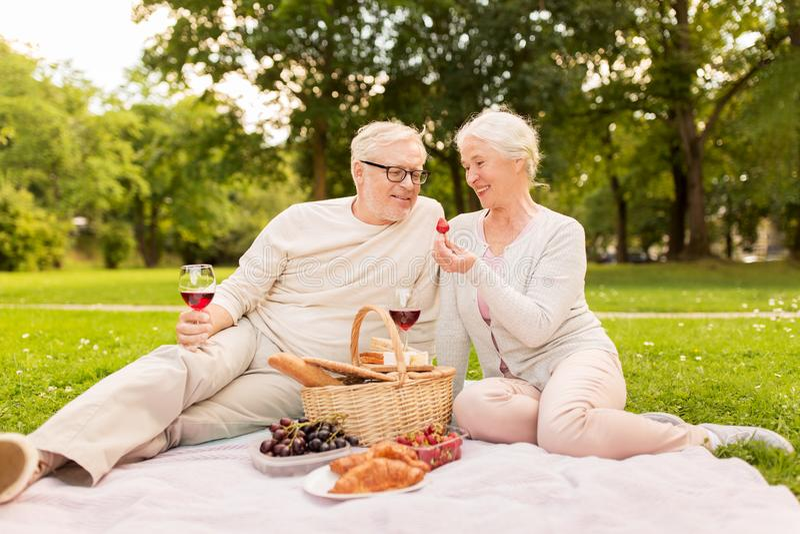 愉快的资深夫妇有野餐在夏天公园 库存照片