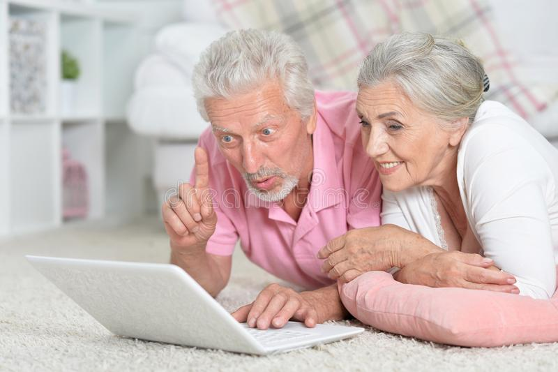 愉快的资深夫妇画象使用膝上型计算机的 免版税库存照片