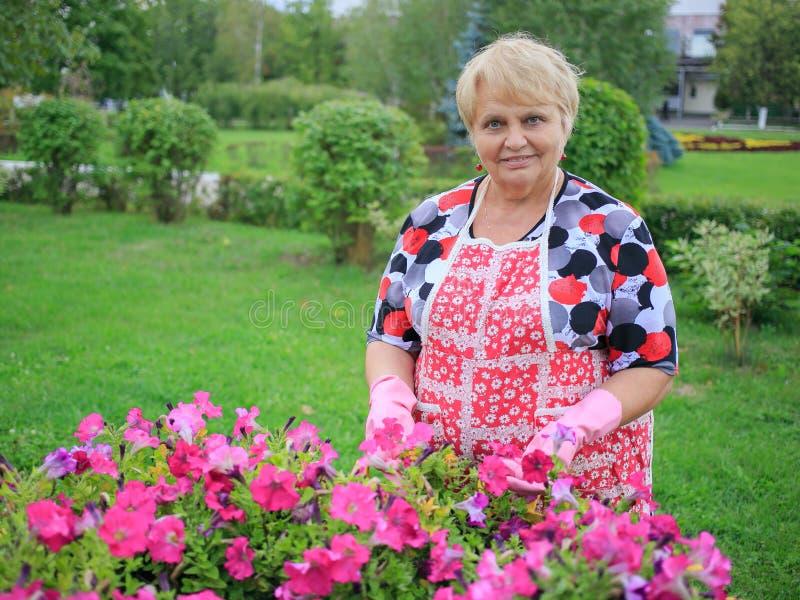 愉快的资深妇女手套在显示五颜六色的花的庭院里 免版税图库摄影