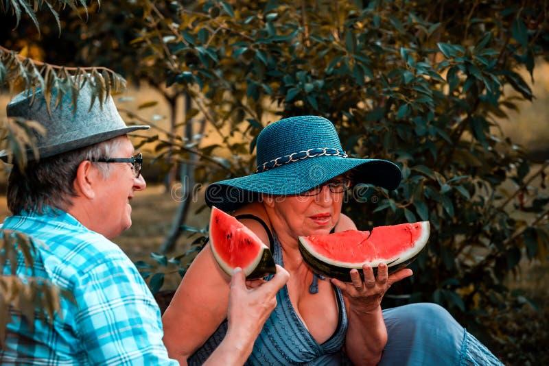 愉快的资深爱恋的夫妇一起吃西瓜和有了不起的时光在野餐 免版税库存图片