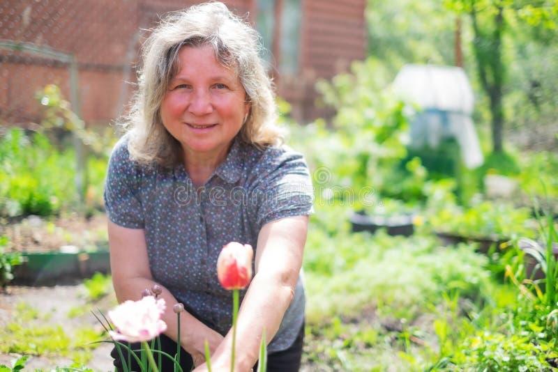 愉快的资深白种人妇女与开花在夏天庭院的花一起使用 库存照片