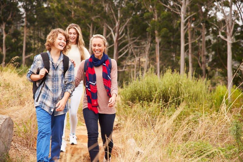 愉快的走在森林里的母亲和两个孩子 免版税图库摄影