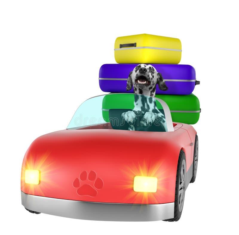 愉快的达尔马希亚狗去乘汽车远航 查出在白色 库存例证