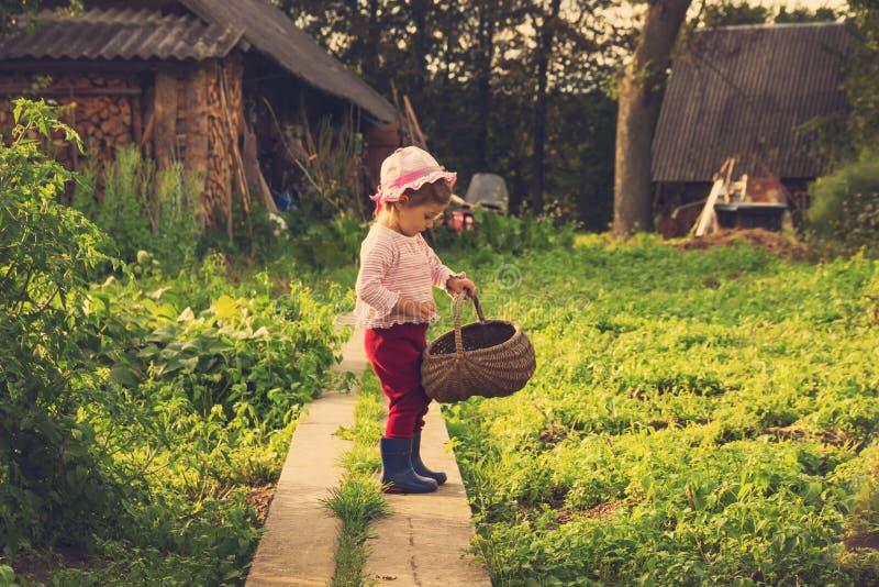 愉快的逗人喜爱的孩子葡萄酒画象与大篮子的获得乐趣在乡下 库存照片