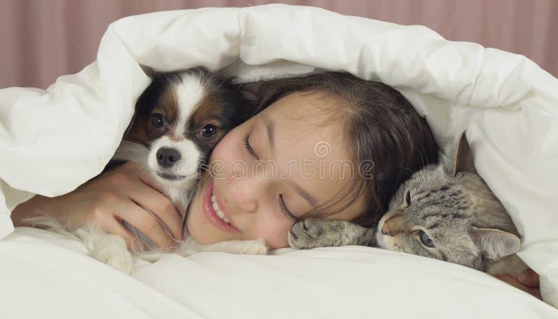 愉快的青少年的女孩与狗Papillon和泰国猫在床上沟通 免版税库存照片