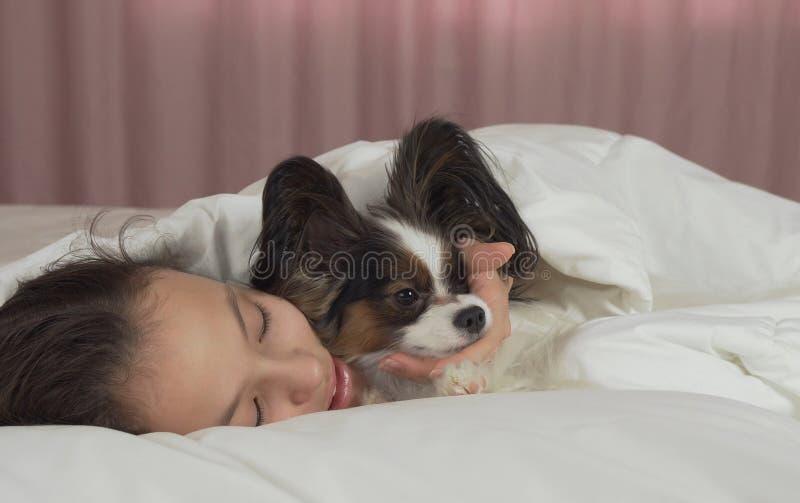 愉快的青少年的女孩亲吻和戏剧与狗Papillon在床上 库存图片