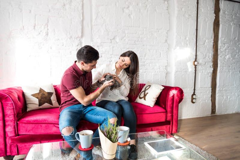 愉快的年轻夫妇在家放松了与兔宝宝宠物 免版税库存图片
