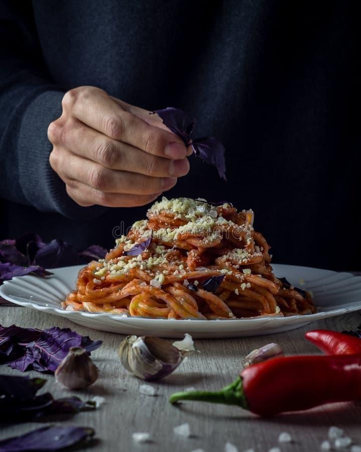 意大利意大利面食 库存照片