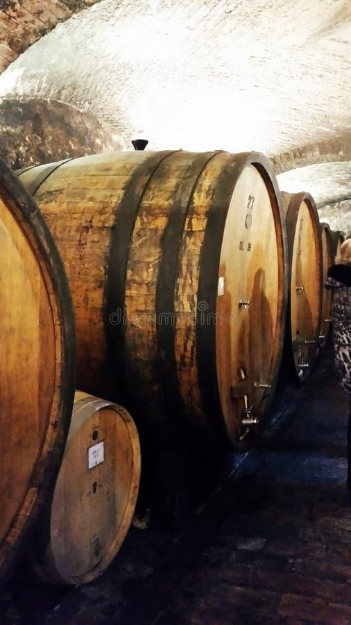 意大利的场面 古老艺术酿酒 别墅圣安那 库存图片