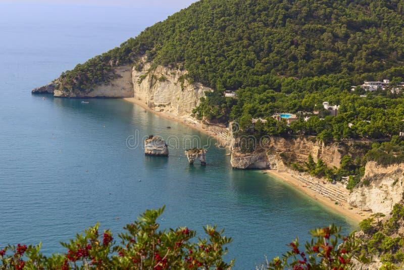 意大利的最美丽的海岸:Baia dei Mergoli海滩或Zagare海湾& x28; Apulia& x29; 免版税库存图片