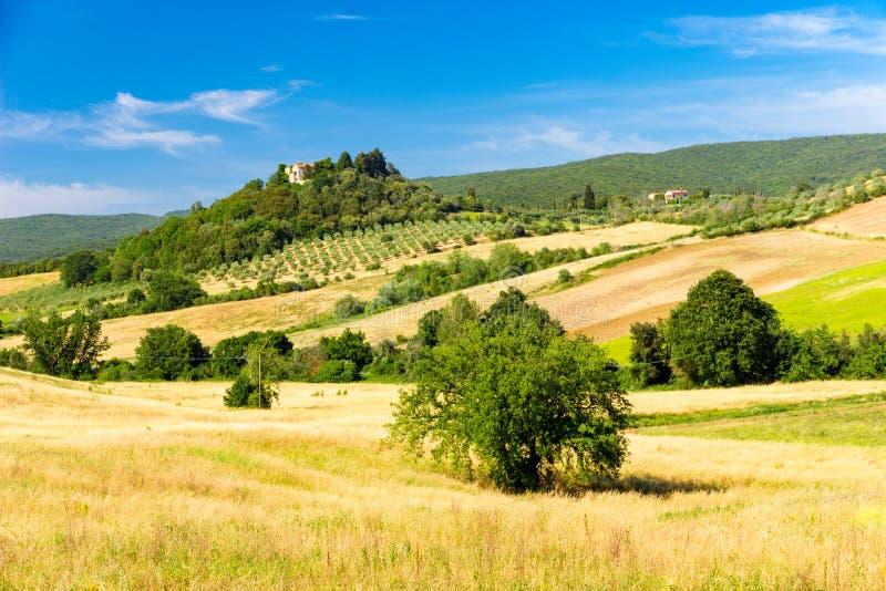 意大利马萨马里蒂马附近阳光明媚的春天托斯卡纳乡村景色 免版税图库摄影