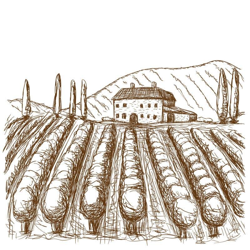 意大利黑白葡萄园拉长的冲程 r 向量例证