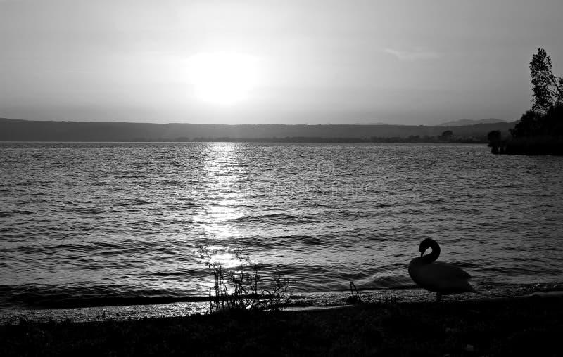 意大利,拉齐奥:日落Bolsena湖 库存图片