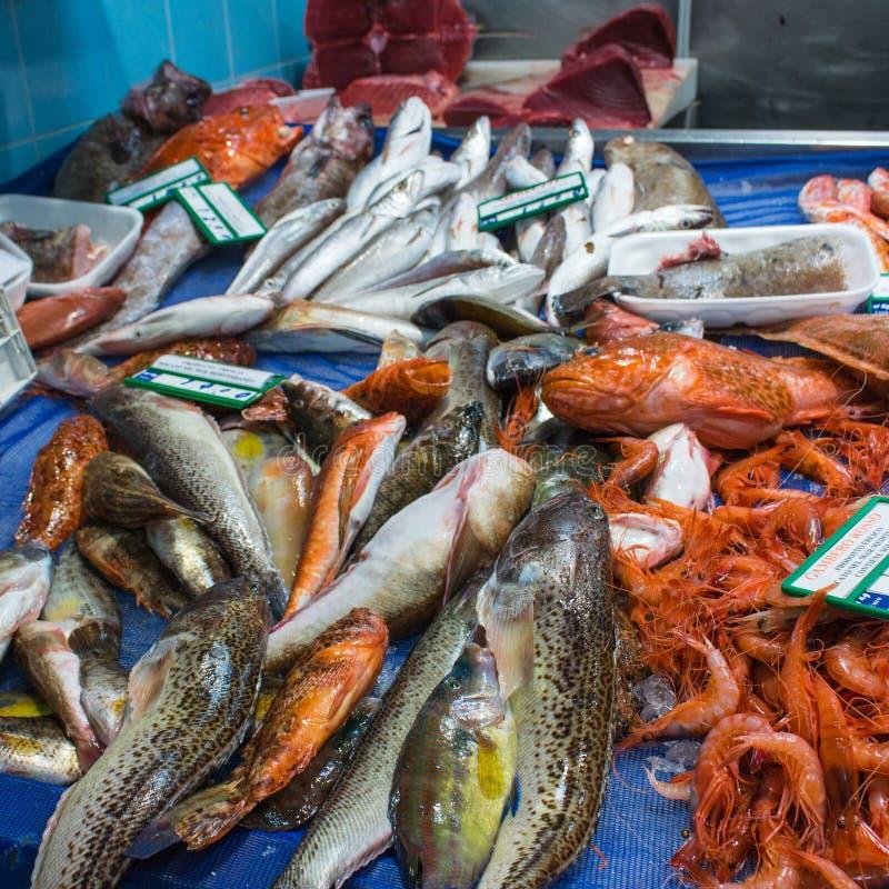 意大利,阿奇雷亚莱(卡塔尼亚) :一个典型的鱼市在西西里岛 免版税库存图片