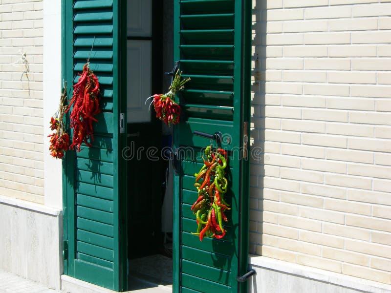 意大利, Salento :在太阳的胡椒 库存图片