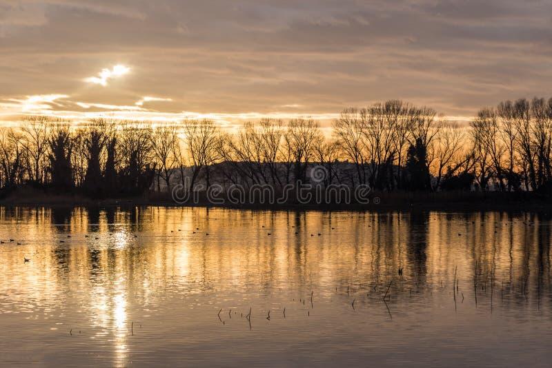 意大利Trasimeno湖翁布里亚美丽的日落,天色闷热,水上树木倒影 免版税库存照片