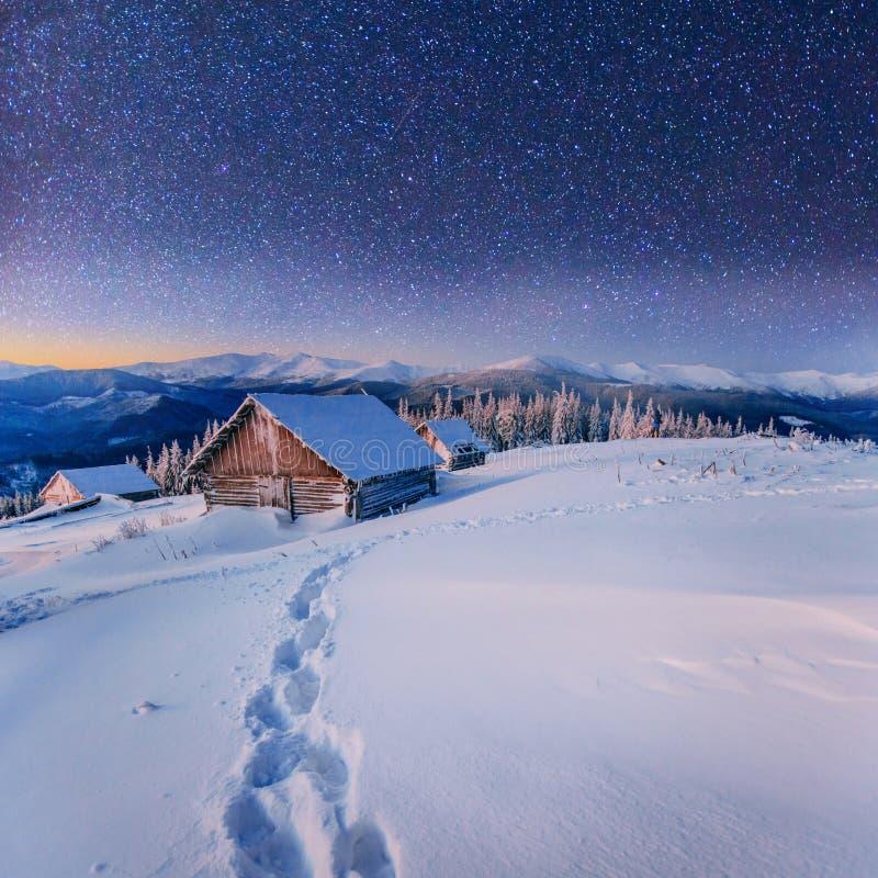 意想不到的冬天风景 乌克兰,欧洲图片