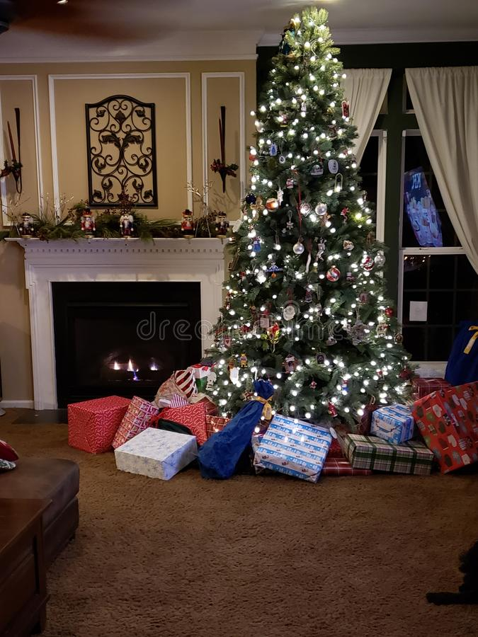 意想不到的圣诞节 库存照片