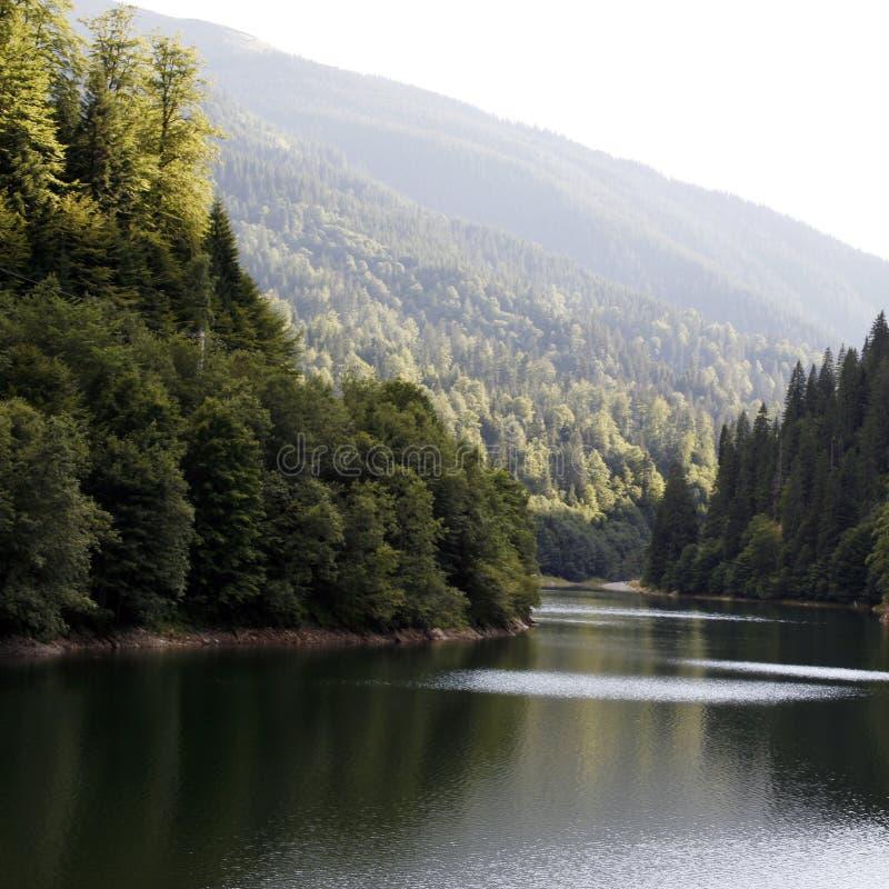 Download 意想不到的山景 库存照片. 图片 包括有 本质, 生气勃勃, 青苔, 天空, 热带, 岩石, 平安, 森林 - 30331360